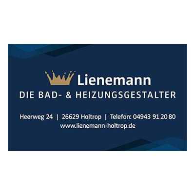 Lienemann Bad Heizung